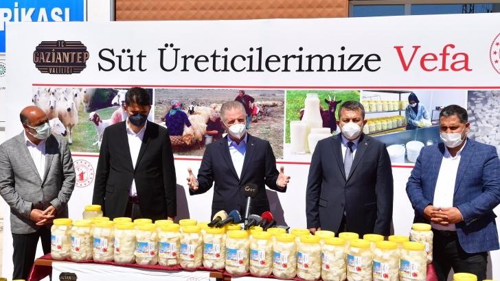 """GAZİANTEP'TE """"SÜT ÜRETİCİLERİNE VEFA"""" PROJESİ HAYATA GEÇİRİLDİ"""